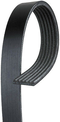 Gmc Premium Series (Century Series Premium OE Micro-V Belt fits 1987-1993 GMC S15 S15 Jimmy Sonoma )