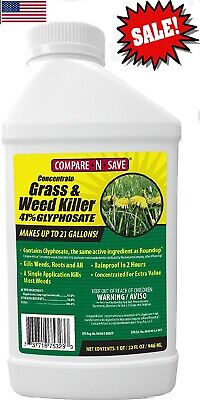 Compare-N-Save Concentrate Grass and Weed Killer, 41-Percent Glyphosate 32oz New Grass Killer Concentrate