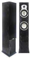 Sinclair Audio Brighton 250iX Tower Loudpeaker (Single). BLOWOUT!!