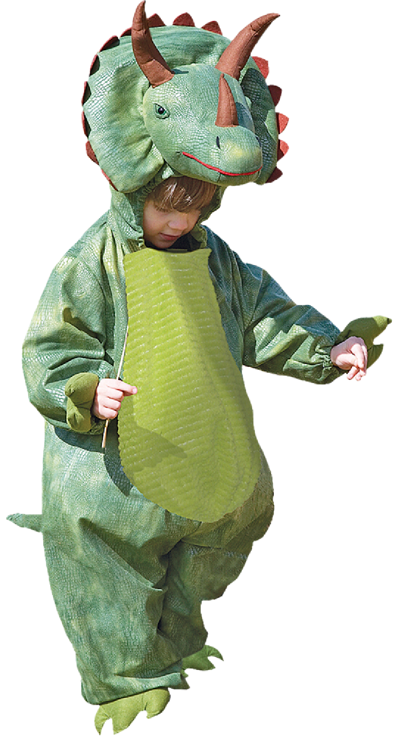 Triceratops Dinosaur Boys Kids Animal Fancy Dress Book Day Costume 18mnths-2yrs