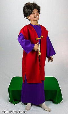 3 Kings Child's Biblical Costume Christmas Wisemen 3 Piece Robe Cloak & Sash MD - 3 Kings Costumes