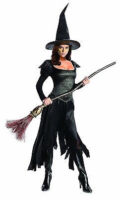 Wicked Witch Women's XS Adult or Teen Oz The Great Dress & Hat Halloween Costume - Great Womens Costumes