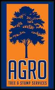 Agro Tree & Stump Services Stafford Brisbane North West Preview