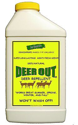 32 Ounce Concentrate Deer - Deer Out 32oz Concentrate Deer Repellent