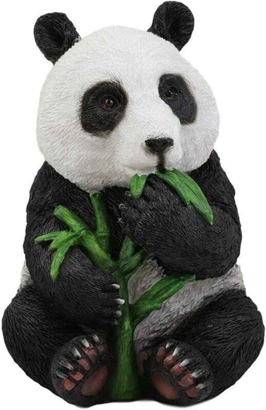 "Ebros China Giant Panda Bear Cub Baby Eating Bamboo Statue 6.5"" H Figurine"