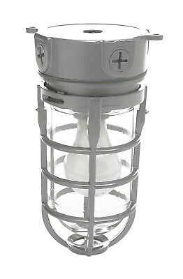 Outdoor Porch Ceiling Light Fixture Industrial Flush Mount Metal Silver Caged