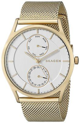 Skagen Men's SKW6173 'Holst' Multi-Function Gold-Tone Stainless Steel Watch