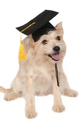 School Graduation Black Grad Hat Pet Dog Costume](Grad Hat)