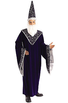 Merlin the Court Magician Adult Costume](Merlin Costumes)