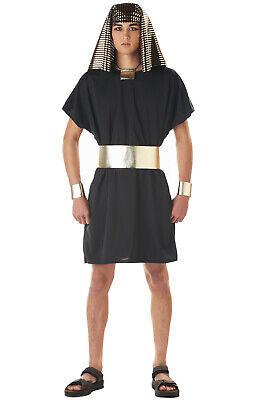 Brand New Adult Men Egyptian King Tut Pharaoh Halloween Costume - Pharaoh Halloween Costume Men