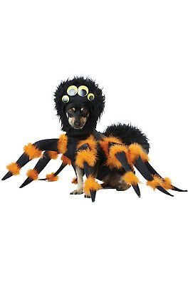 Brand New Insect Spider Pup Pet Dog Costume