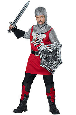 Brand New Brave Knight Renaissance Boys Child Costume - Boys Renaissance Costumes