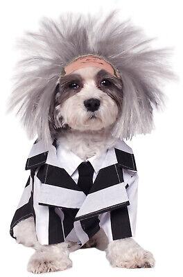 Beetlejuice Dog Costume (Brand New Beetlejuice Pet Dog)