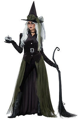 Brand New Gothic Witch Adult Costume