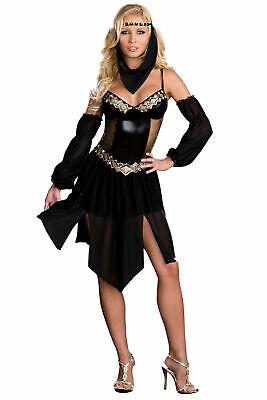 Harem Nights Dreamgirls Adult Costume (e) - Harem Costume