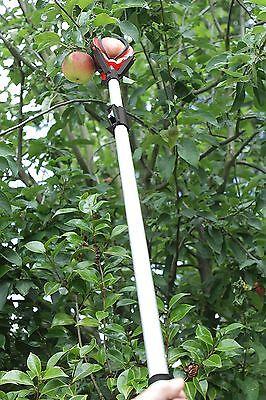 Darlac Telescopic Easy Reach Large Fruit Tree Apple/Pear Picker  - DP116