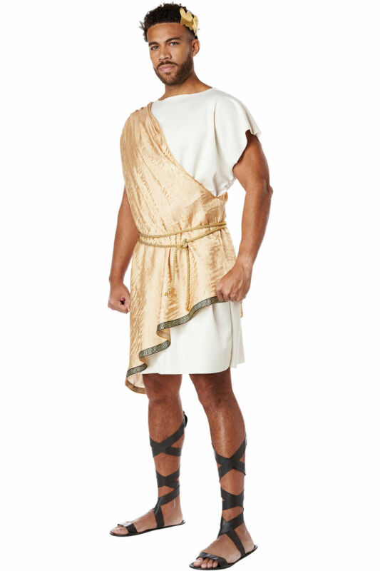 California Costume Greek God Toga Adult Men Medieval Roman Outfit 5121-179