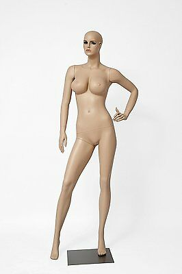 Realistic Female Mannequin Includes Wig Large Bust Made Of Fiberglass Lcy3