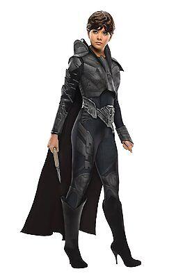 Secret Wishes Superman Man of Steel Black Faora Adult Ladies Costume w/Cape