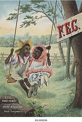 Black Americana Patent Kidney Remedy Poster Quack Medicine Snake Oil Print Ad 10