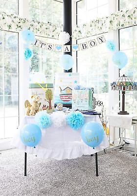 Baby Shower Decorations for Boy | 26 Pieces Set Includes: It's a Boy Banner (Baby Shower Decorations For Boys)