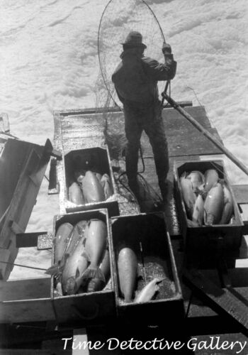 Indians Fishing for Salmon, Celilo Falls, Oregon (3) -1941- Historic Photo Print