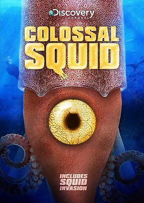 Colossal Squid Dvd Movie   Discovery Channel  Brand New   Sealed