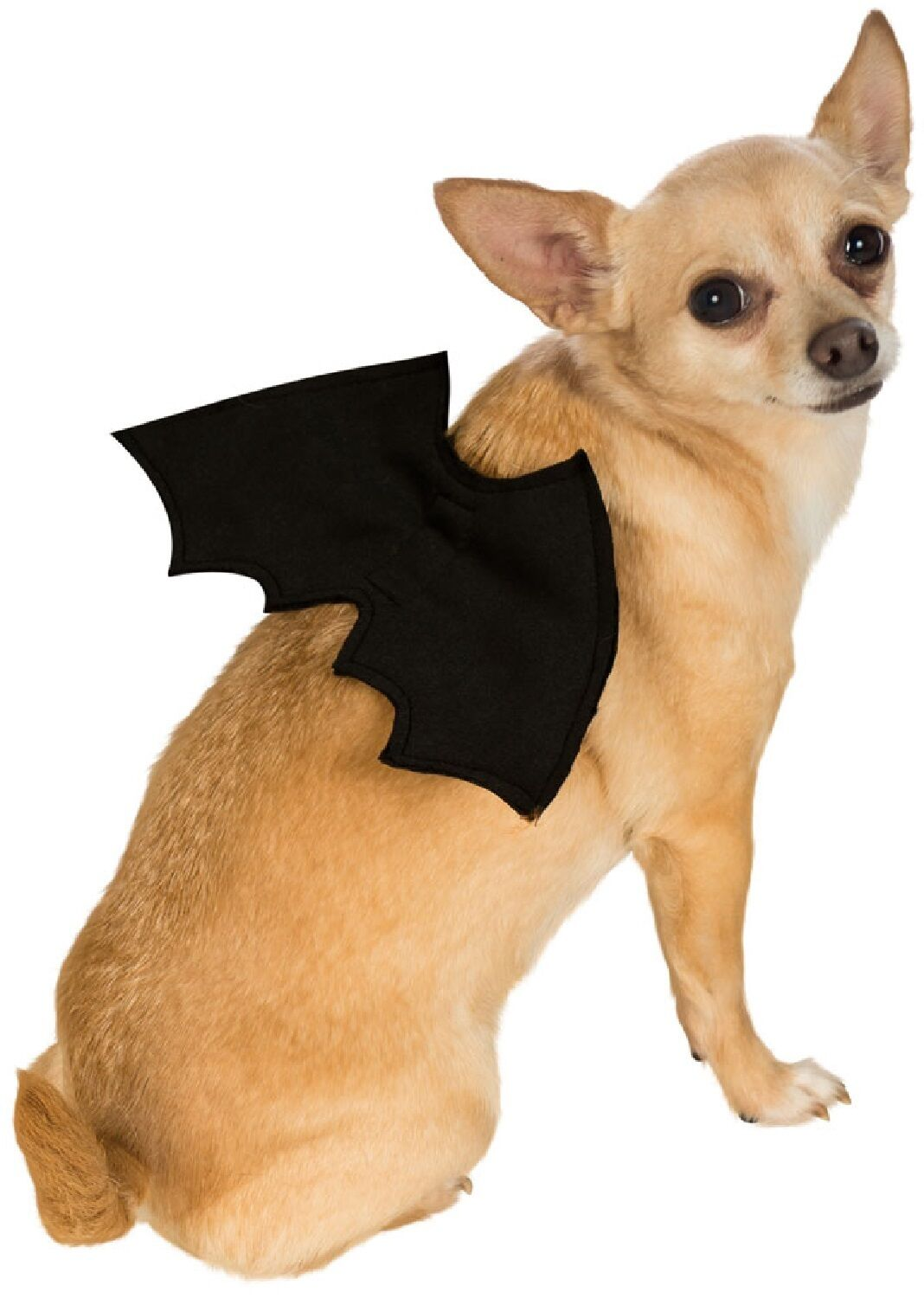 Animal Pet Dog Cat Bat Vampire Halloween Fancy Dress Costume Outfit Wings 4