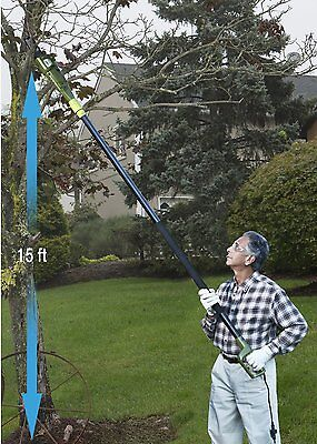 """Electric Pole Saw Tree Branch Chain Saw Trimmer Chainsaw 8"""" Bar Pruner"""