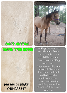 does anyone know this mare