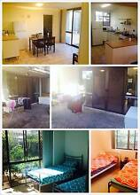 Surfers Paradise share house $110 Adelaide Hills Preview