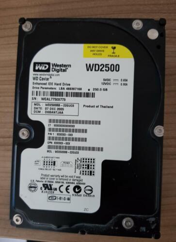 Western Digital WD 250 GB Festplatte IDE 3,5 Zoll Intern