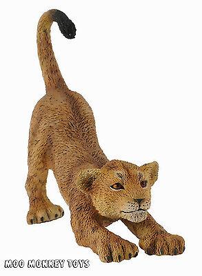 LION CUB STRETCHING CollectA # 88416 Collectible BABY Safari Animal Replica NWT