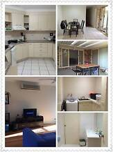 Room For Rent In Southport Southport Gold Coast City Preview