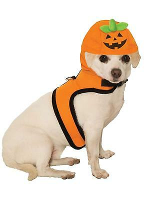 A Pumpkin Halloween Costume (Jack A Lantern Halloween Pumpkin Pet Cat Dog Costume)