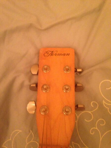 Norman b-15 acoustic guitar