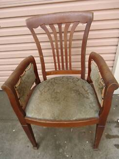 SILKY OAK DINING CHAIRS
