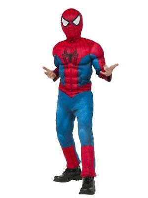 Marvel Comics Big Boys Spider-Man Muscle Chest Costume with Mask](A Spiderman Costume)