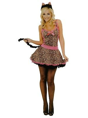 Womens Miss Kittie Flirty Cat Girl Halloween Costume Dress Tail & Headpiece - Catgirl Costumes