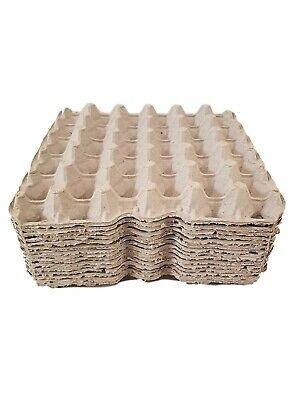 6 Chicken Egg Cartons Paper Trays Flats Hatching Craft Poultry 30 Eggs Each