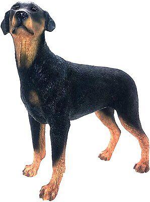 Doberman Pinscher Da collezione Figurina Cane Ornamento