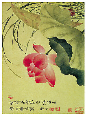 1260 Red Asian Flower. Floral Art Decor POSTER.Graphics to decorate home office. ()