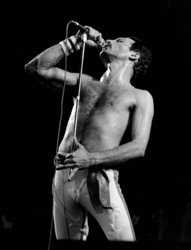 11 X 14 inch  Freddie Mercury Concert photograph