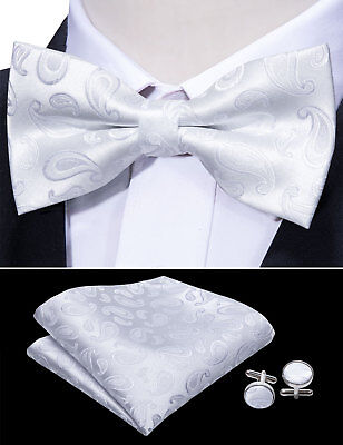 White Tuxedo Bow Tie (USA Bow Tie Set Men's Tuxedo Bowtie Adjustable White Paislety Pre Tied)