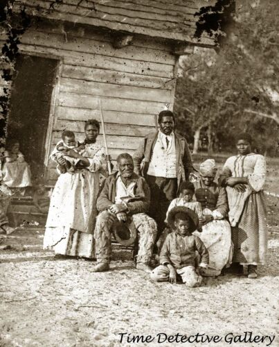 Five Generations of African American Family on Plantation - Historic Photo Print