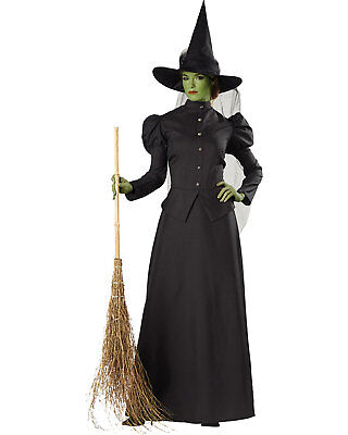 Tulle Witch Costume (Morris Costumes Women's Witch Classic Deluxe Adult Tulle Costume L.)