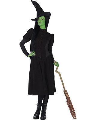 Morris Costume Women's Elphaba Witch Jacquard Costume Black Green M. - Elphaba Costumes