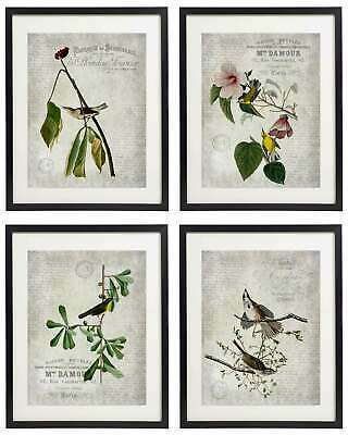 Vintage Bird & Botanical No.4 Home Decor Wall Art Print Set of 4 Prints (Botanical Setting)