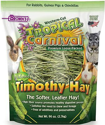 F.M. Brown's Tropical Carnival Natural Timothy Hay for Small