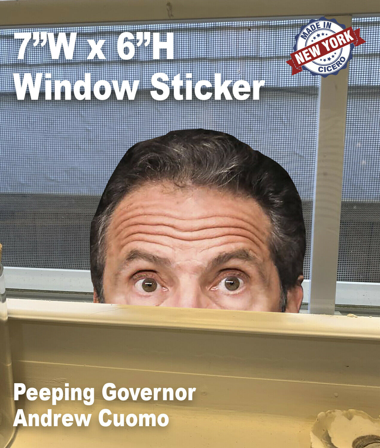 Home Decoration - Andrew Cuomo /Bill DeBlasio Peeping Window Sticker Governor Watching NYS Peeking